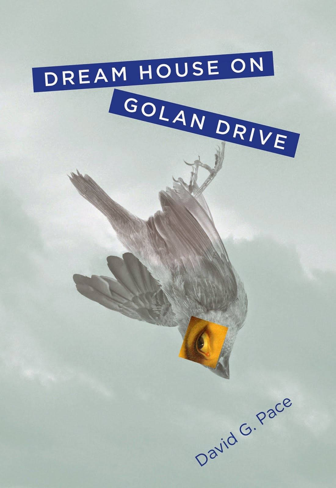 """Dream House on Golan Drive,"" New from Signature Books"